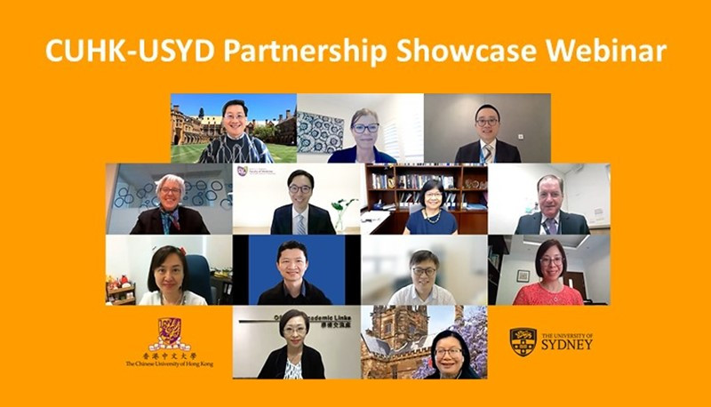 A joint webinar with USYD reveals how successful international partnerships are forged to promote research excellence.
