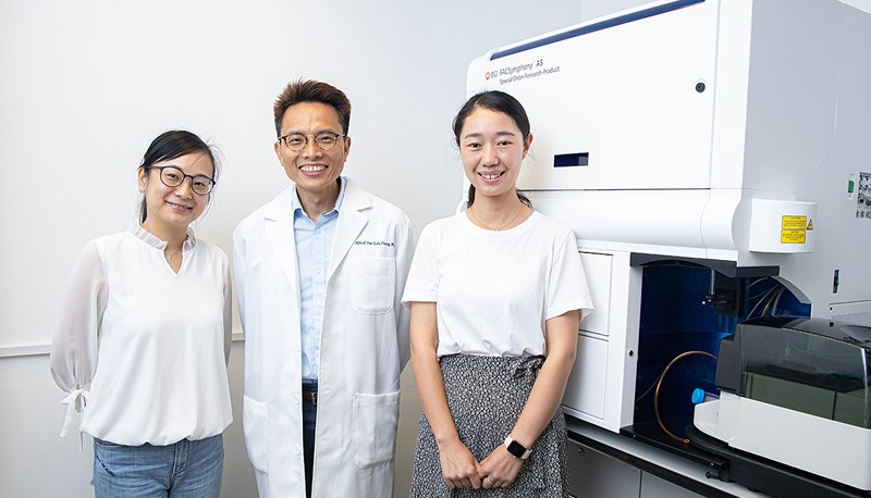 Prof. Alfred Cheng and his team conduct the study with the BD FACSymphonyTM A5.2 machine, the only one in Hong Kong and a state-of-the-art cell analyser, to unravel the complexity of tumour ecosystem.
