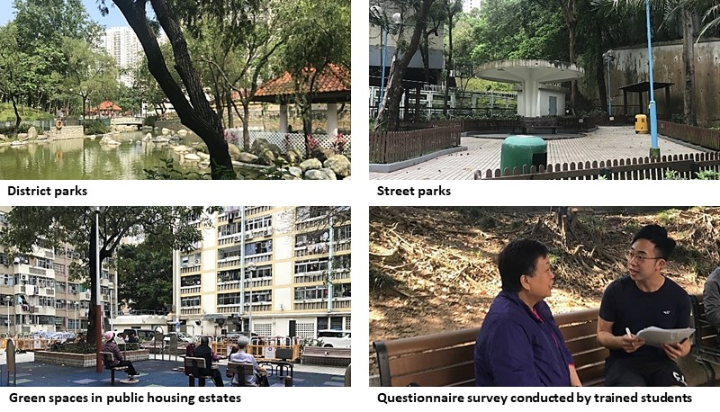 IOFC's research sheds light on the use of urban green spaces to promote healthy ageing.